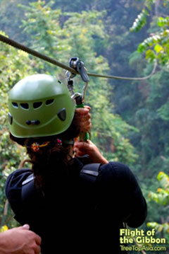 Flight of the Gibbon - Zipline Canopy Tour